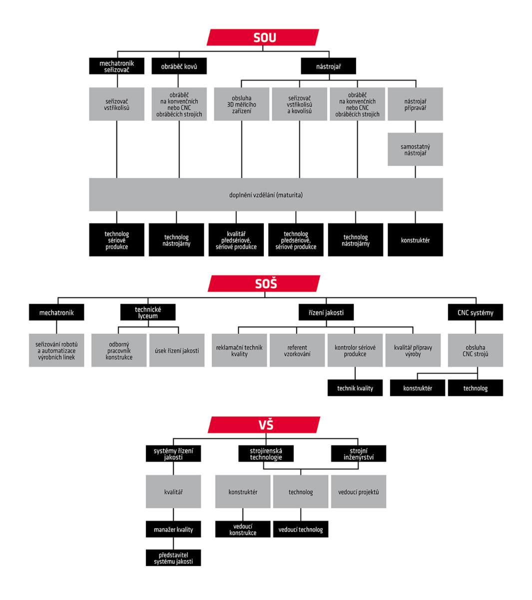 struktura zaměstnanců forez